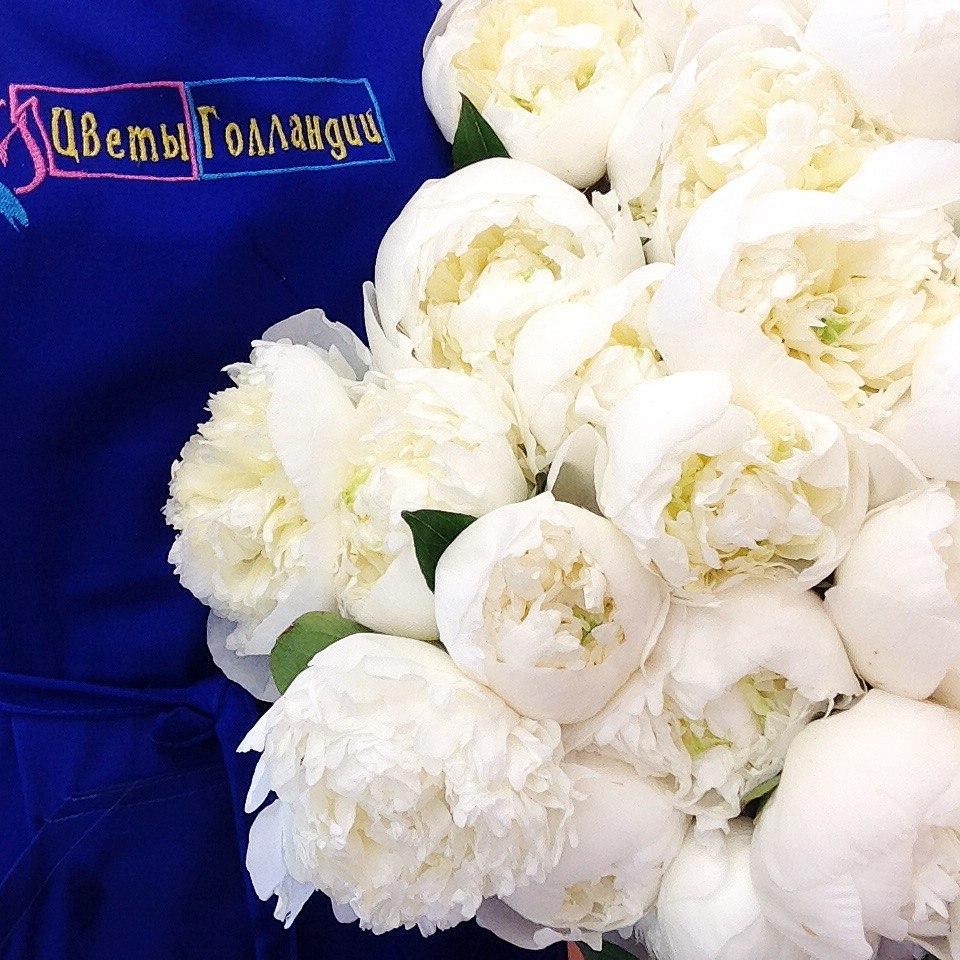 цветы гол 8