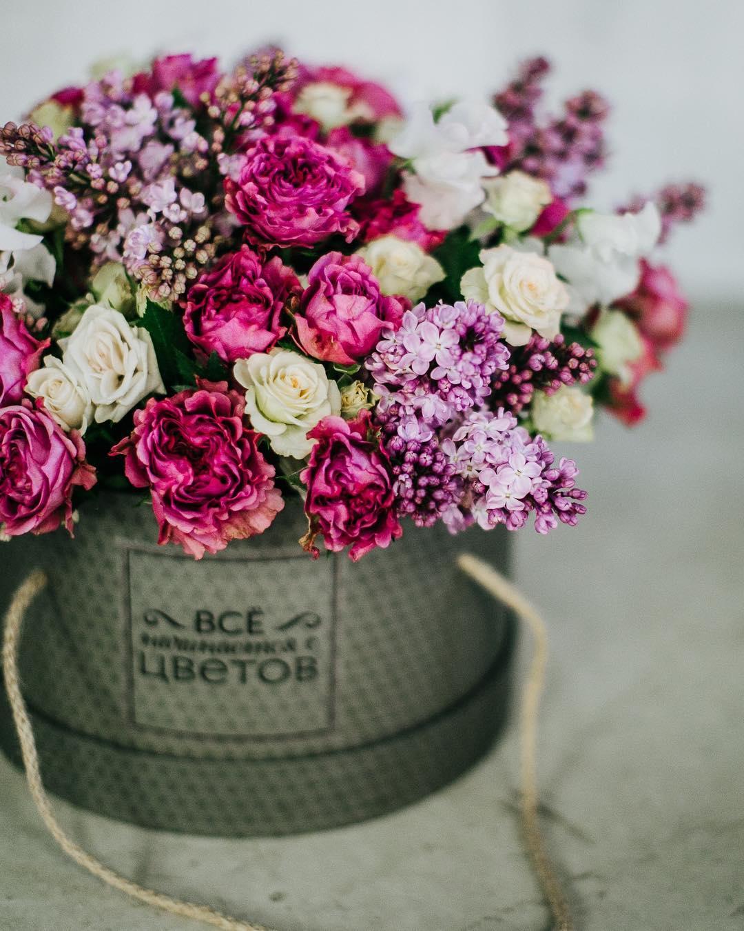 hello_flowers_kld5