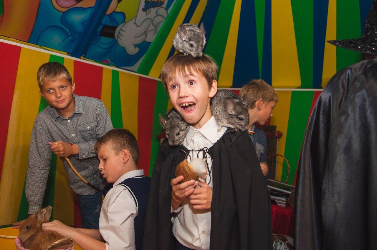 детские праздники в калининграде Песочница - 49