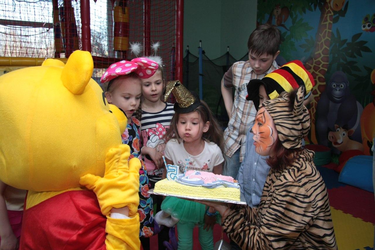 детский игровой клуб в Калининграде Джунгли -59